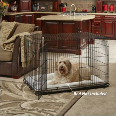 Dog Houses Buying Guide