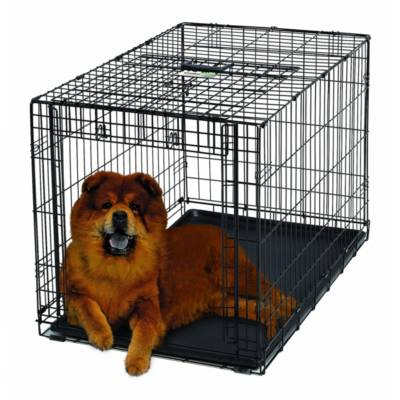 Dog Houses Top 10 Rankings
