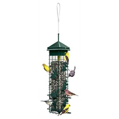 Bird Feeder Buying Guide