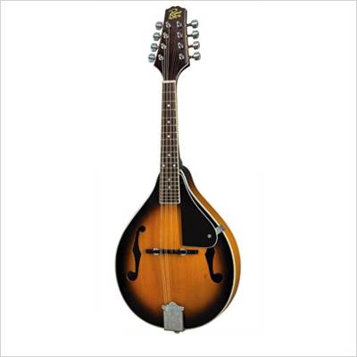 Mandolin Buying Guide