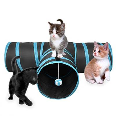 Cat Toy Top 10 Rankings