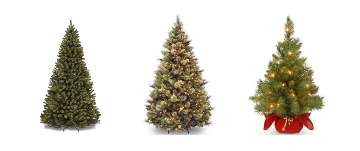 Christmas Tree Top 10 Rankings