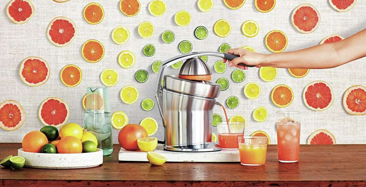 Citrus Juicer Top 10 Rankings