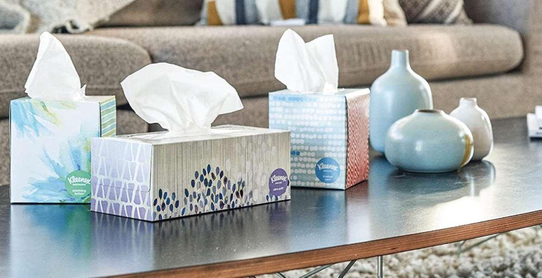 Paper Towel Top 10 Rankings